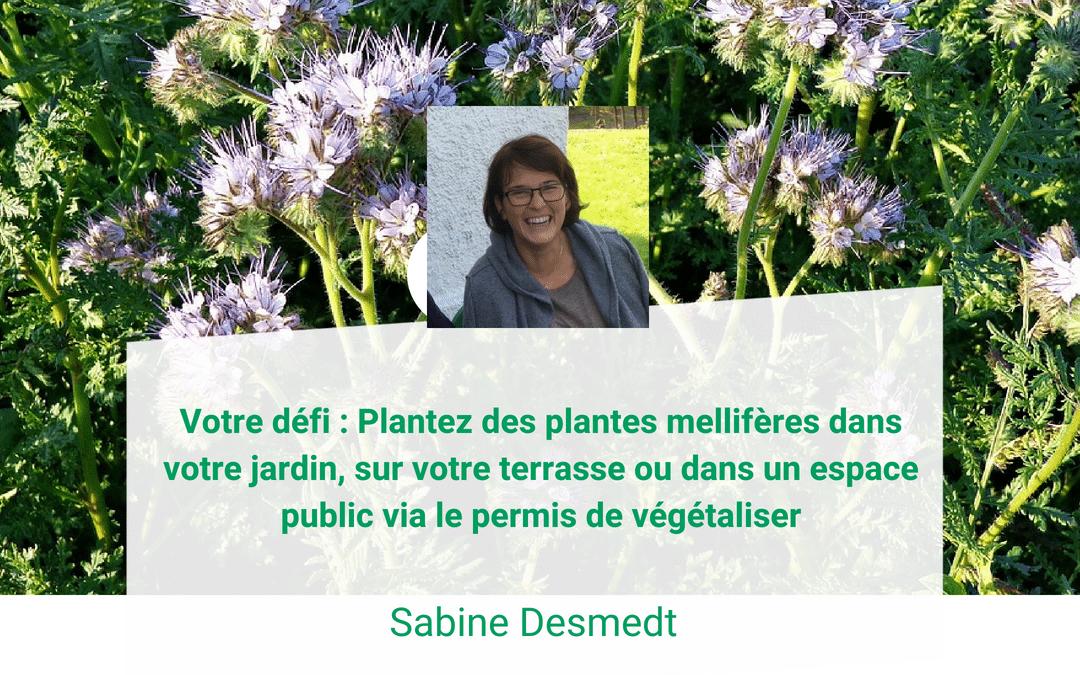 Sabine Desmedt : La liste des plantes mellifères